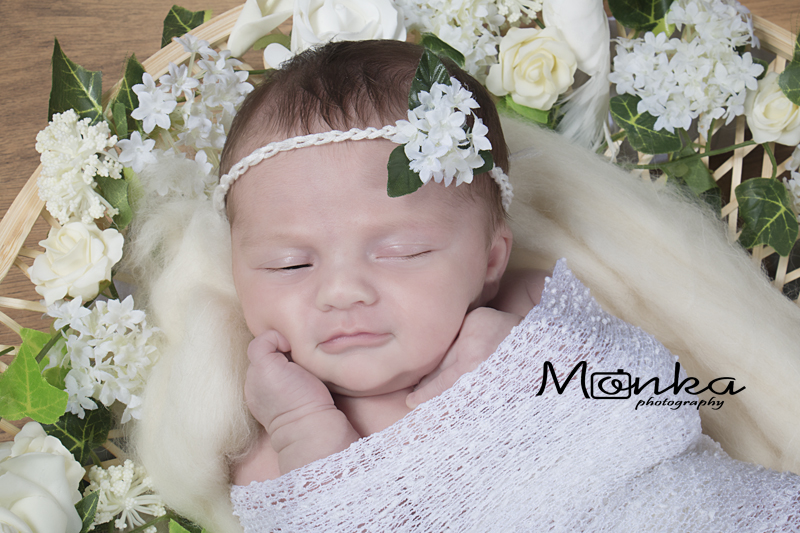Newborn session at Monka Photography